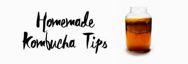 Tips for home brewing Kombucha